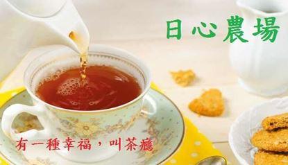 圖片 日心農場-台茶18號紅玉紅茶