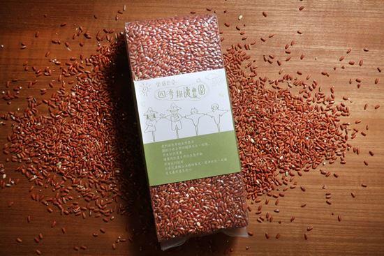 圖片 四季耕讀農園-自然紅糯米