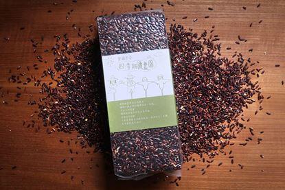 圖片 四季耕讀農園-自然黑糯米 (紫米)